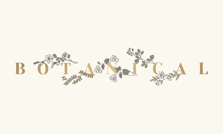 Botanical text with floral design vector