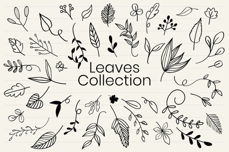 Various leaves doodle collection vector Ilustrace