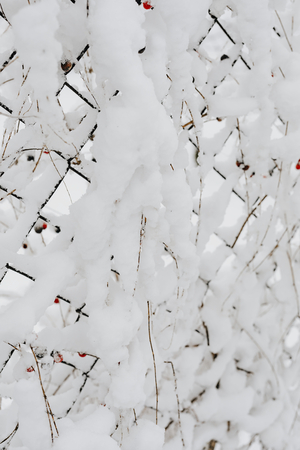 Closeup of snow covering a fence