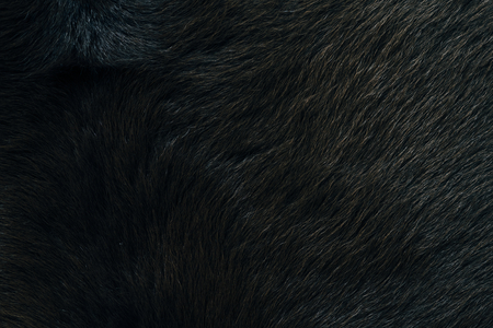 Natural fur fabric material background