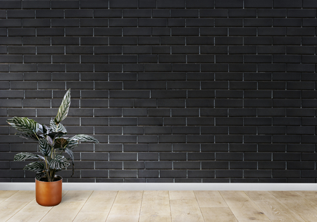 Plant against a black brick wall room mockup Stockfoto