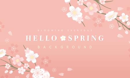 Pink cherry blossom background vector Illustration