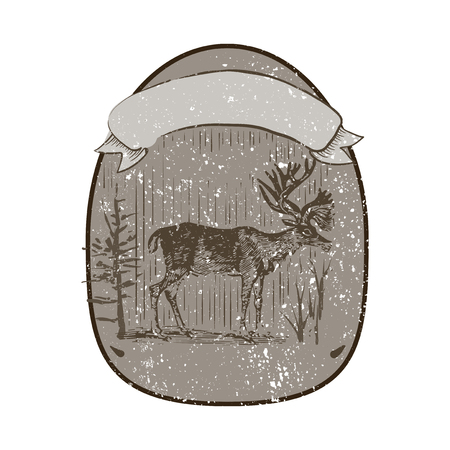 Male deer illustration badge vector Illustration