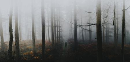 Man walking in the misty woods