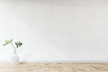 Plant against a white wall mockup Stockfoto