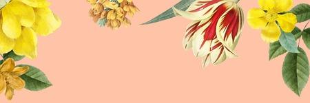 Blank floral banner design vector Standard-Bild - 124220074