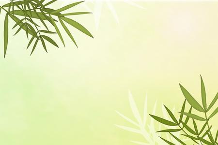 Vecteur de fond d'éléments de feuille de bambou