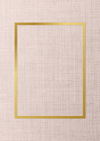 Gold rectangle frame on a peach fabric background Reklamní fotografie
