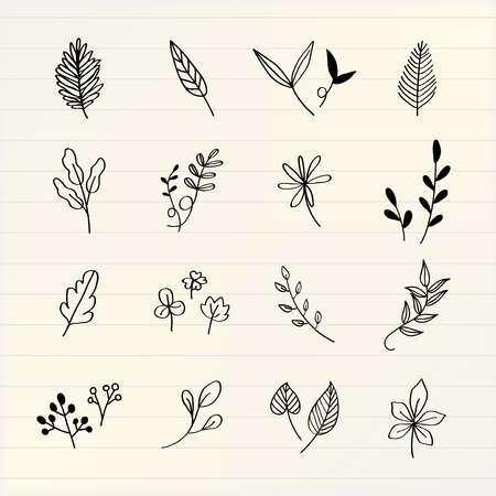 Various leaves doodle collection vector Vektorové ilustrace