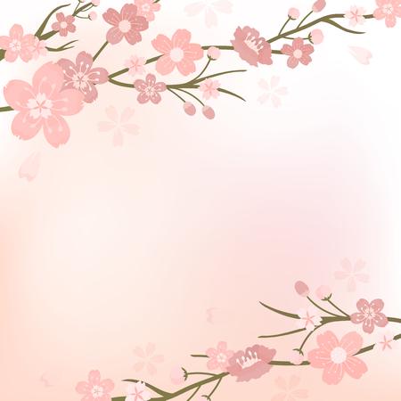 Różowy kwiat wiśni puste tło vectot