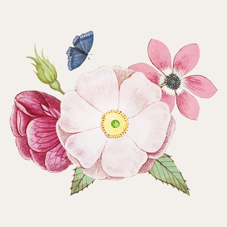 Vintage wild rose flower illustration vector Illustration