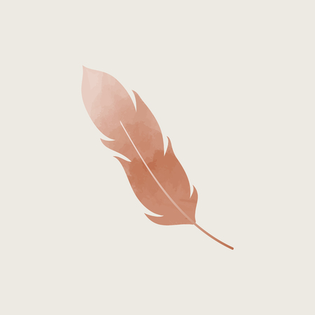 Brown single lightweight feather, vector illustration