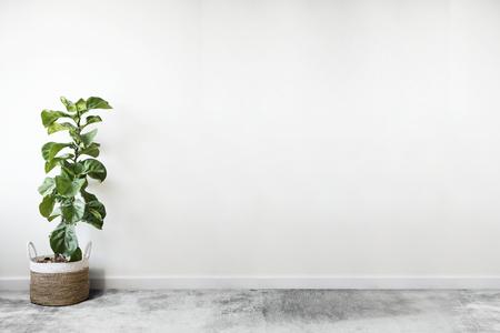 Habitación blanca vacía con una maqueta de pared de planta