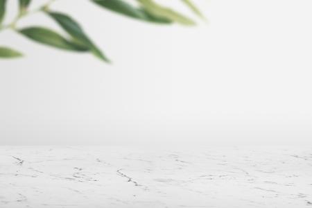 Parete semplice con foglie e pavimento in marmo bianco sullo sfondo del prodotto