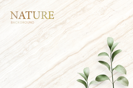 Tropical leaves on a marble background Stock Photo