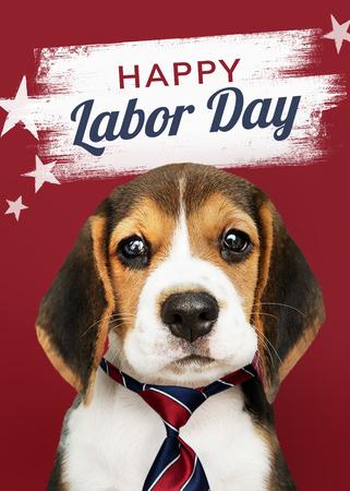 可爱的小猎犬祝你劳动节快乐