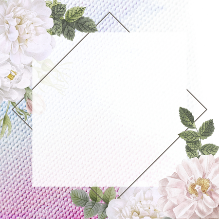 Frame on a fabric with musk rose illustration Stock Photo