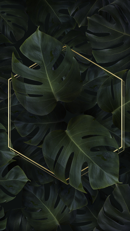 Hexagon golden frame on a tropical background Banque d'images