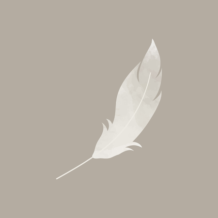 Single gray lightweight feather vector