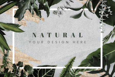 Maqueta de marco de diseño de follaje tropical Foto de archivo