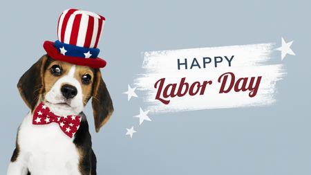 Happy labor day from cute Beagle in Uncle Sam hat Archivio Fotografico - 123234811