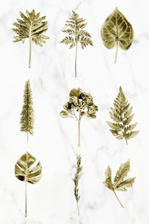 Gold colored leaves on white marble background collection illustration