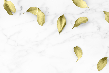 Gold eucalyptus leaves on white marble background illustration