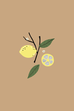 Lemon on a brown background vector