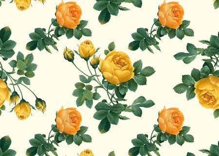 Yellow roses wallpaper design illustration Stock fotó