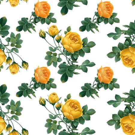 Yellow roses wallpaper design illustration Stock fotó