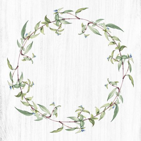 Botanical green wreath on a wooden background