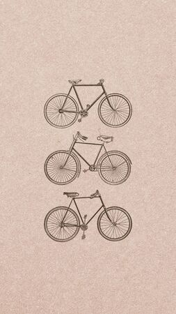 Vintage two wheel bicycle collection