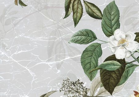Marble textured background with musk rose