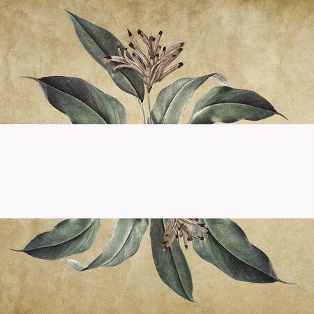 Floral banner on a vintage paper background