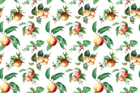 Hand drawn fruits wallpaper illustration Stock Photo