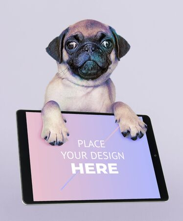 Adorable pug puppy with a digital tablet mockup