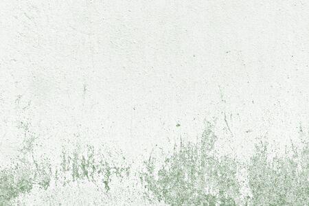 Grunge green concrete textured background 스톡 콘텐츠
