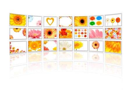 Flower on tv screens Stock Photo