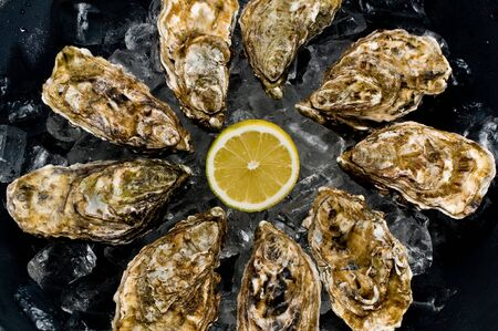 mussle: oyster with lemon Stock Photo
