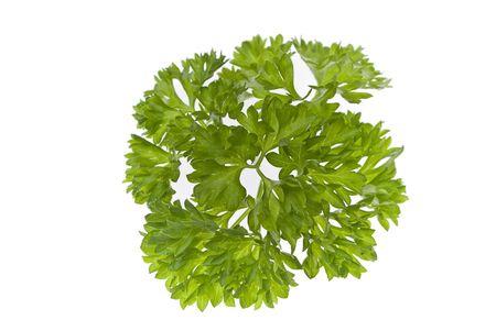herbage: parsley