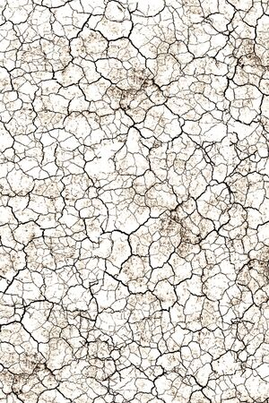 parched: crack background