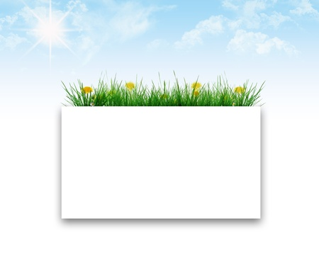 grass frame Stock Photo - 9554304