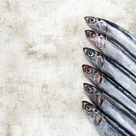 sardines photo