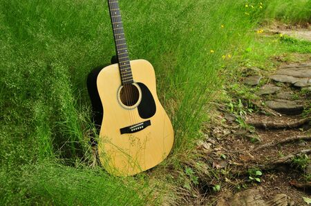 Guitar On Natures photo