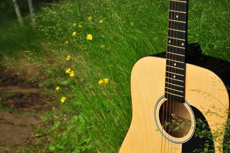 Nature Guitar Banco de Imagens