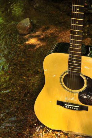Guitar In Nature Standing In Creek Bed photo