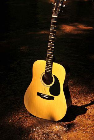 Guitar In Nature Standing In Creek Bed Stock fotó