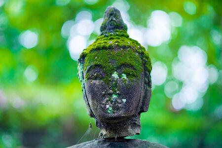blissfull: Ancient Head Buddha statue in Wat Umong