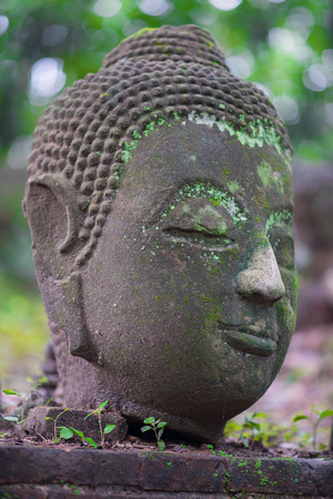 blissfull: Ancient Head Buddha statue in Wat Umong