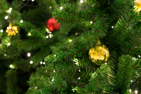 tree detail: Christmas tree with decoration, detail Christmas tree in garden Stock Photo